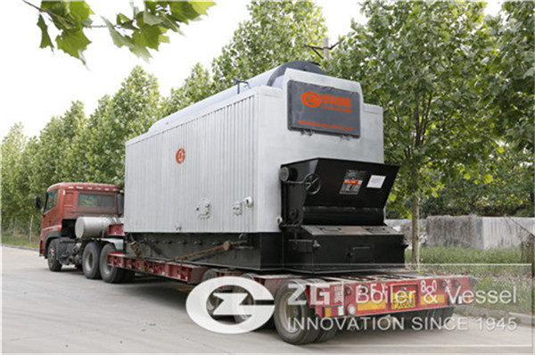 DZL series biomass steam boiler