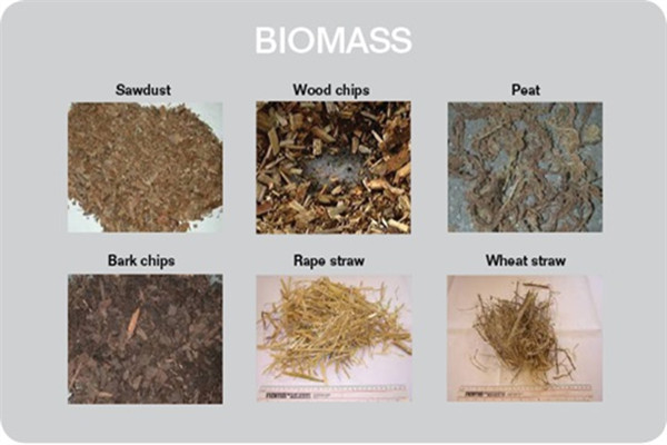 Common fuels for biomass boilers