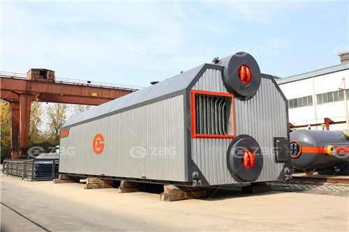 Biomass boiler for paper mill