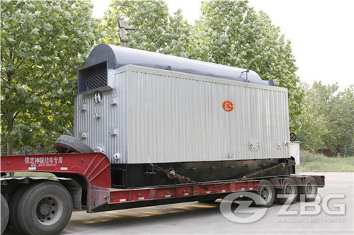 4 ton dzl series biomass chain grate boiler for Philippines palm oil mill
