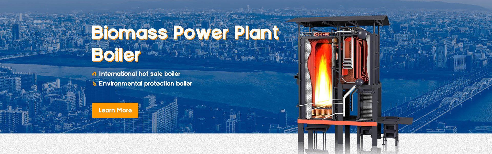 ZBG biomass boiler-Zhengzhou Boiler Co., Ltd.